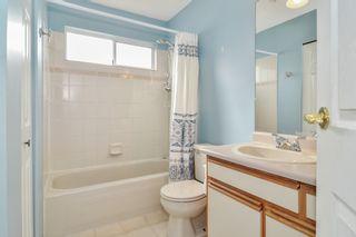 Photo 16: 20091 WANSTEAD Street in Maple Ridge: Southwest Maple Ridge House for sale : MLS®# R2545243