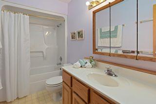 Photo 24: 131 Silver Beach: Rural Wetaskiwin County House for sale : MLS®# E4253948