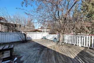 Photo 41: 46 Diamond Street Close: Red Deer Detached for sale : MLS®# A1093218