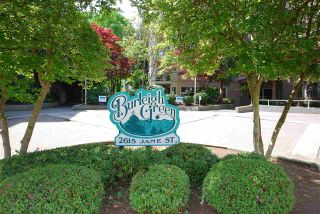 """Photo 35: 203A 2615 JANE Street in Port Coquitlam: Central Pt Coquitlam Condo for sale in """"BURLEIGH GREEN"""" : MLS®# R2090687"""