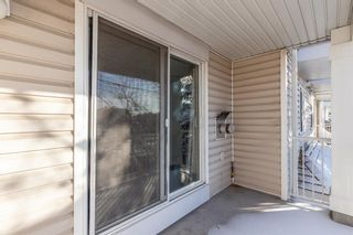 Photo 31: 1204 11 Chaparral Ridge Drive SE in Calgary: Chaparral Apartment for sale : MLS®# A1066729