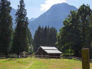 Photo 17: 14848 SQUAMISH VALLEY ROAD in Squamish: Upper Squamish House for sale : MLS®# R2193878