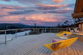 Photo 45: 236 Stevens Rd in : SW Prospect Lake House for sale (Saanich West)  : MLS®# 871772