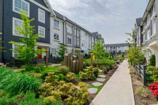 """Photo 20: 92 8438 207A Street in Langley: Willoughby Heights Townhouse for sale in """"YORK By Mosaic"""" : MLS®# R2191419"""