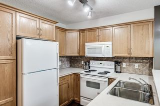 Photo 25: 306 390 Marina Drive: Chestermere Apartment for sale : MLS®# A1129732