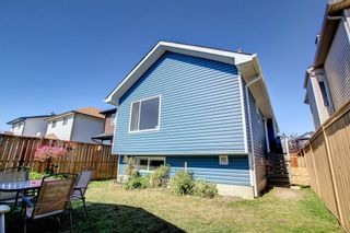 Photo 38: 67 Tarington Place NE in Calgary: Taradale Detached for sale : MLS®# A1146117