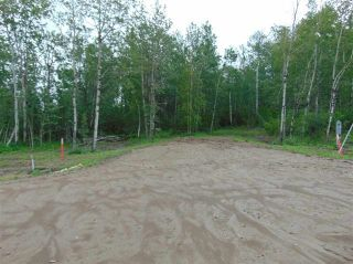 Photo 7: 10 27331 Township Road: Rural Leduc County Rural Land/Vacant Lot for sale : MLS®# E4240699