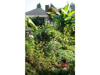 Photo 19: 8041 12TH AV in Burnaby: East Burnaby House for sale (Burnaby East)  : MLS®# V1101813