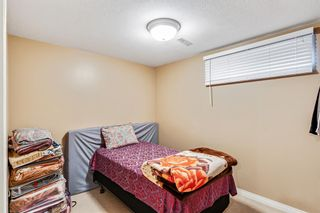 Photo 35: 40 Coral Reef Bay NE in Calgary: Coral Springs Detached for sale : MLS®# A1118339