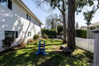 Photo 39: 4208 Morris Dr in : SE Lake Hill House for sale (Saanich East)  : MLS®# 871625