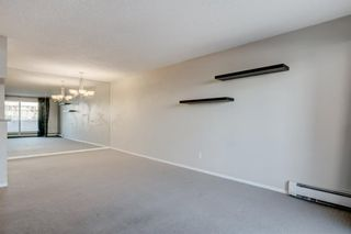 Photo 20: 208 540 18 Avenue SW in Calgary: Cliff Bungalow Apartment for sale : MLS®# A1046007