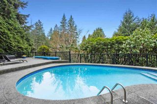 Photo 4: 3855 BAYRIDGE Avenue in West Vancouver: Bayridge House for sale : MLS®# R2540779