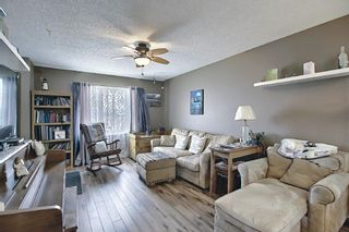Photo 6: 367 Maitland Crescent NE in Calgary: Marlborough Park Detached for sale : MLS®# A1093291