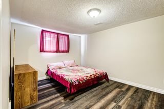 Photo 40: 8248 4A Street SW in Calgary: Kingsland Detached for sale : MLS®# A1142251