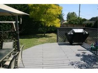 Photo 9: 4261 Panorama Pl in VICTORIA: SE Lake Hill House for sale (Saanich East)  : MLS®# 553505