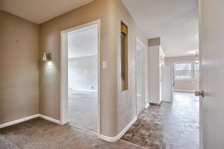 Photo 22: 226 24 Avenue NE in Calgary: Tuxedo Park Detached for sale : MLS®# A1070997