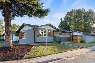 Main Photo: 9703 2 Street SE in Calgary: Acadia Detached for sale : MLS®# A1144786