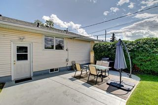 Photo 24: 3111 RAE Crescent SE in Calgary: Albert Park/Radisson Heights Detached for sale : MLS®# C4258934