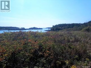 Photo 10: 637 Wellington Road in Blacks Harbour: Vacant Land for sale : MLS®# NB060608