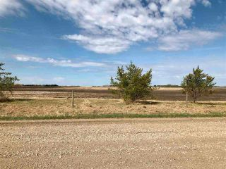Photo 9: RR 255 & HWY 37: Rural Sturgeon County Rural Land/Vacant Lot for sale : MLS®# E4244134