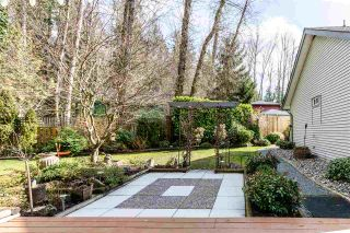 Photo 29: 8536 TERRIS Street in Mission: Mission BC House for sale : MLS®# R2548031