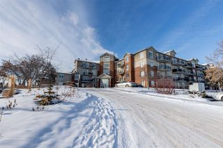 Photo 41: 201 6220 134 Avenue in Edmonton: Zone 02 Condo for sale : MLS®# E4227871