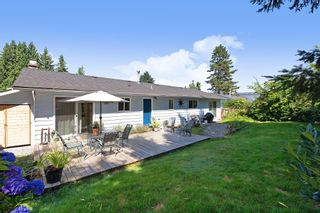 Photo 17: 22914 STOREY Avenue in Maple Ridge: East Central House for sale : MLS®# R2484029