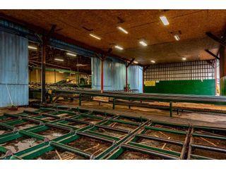 Photo 4: 720 RIVERSIDE Road in Abbotsford: Poplar Industrial for sale : MLS®# C8027941