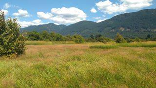 Photo 4: 10474 PATTERSON Road in Mission: Durieu Land for sale : MLS®# R2605591