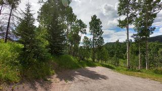 Photo 40: 74194 Highway 40 in Rural Bighorn No. 8, M.D. of: Rural Bighorn M.D. Detached for sale : MLS®# A1017139