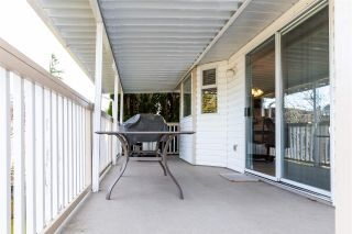 Photo 33: 8426 JENNINGS Street in Mission: Mission BC House for sale : MLS®# R2537446