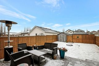 Photo 30: 84 PRESTWICK Heights SE in Calgary: McKenzie Towne Detached for sale : MLS®# A1063587