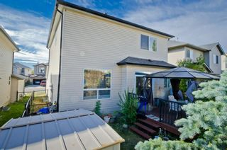Photo 36: 117 Evansmeade Circle NW in Calgary: Evanston Detached for sale : MLS®# A1042078