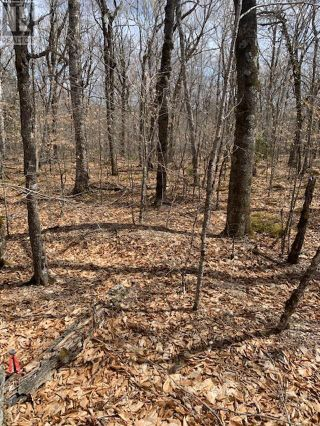 Photo 1: 82 8 Sparkling Spring Lane in Labelle: Vacant Land for sale : MLS®# 202111044
