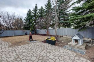 Photo 47: 2 Hesse Place: St. Albert House for sale : MLS®# E4236996