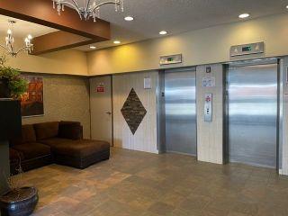 Photo 32: 207 9710 105 Street in Edmonton: Zone 12 Condo for sale : MLS®# E4239469