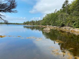 Photo 2: Scott's Point Road in East Dover: 40-Timberlea, Prospect, St. Margaret`S Bay Vacant Land for sale (Halifax-Dartmouth)  : MLS®# 202121077