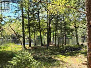 Photo 6: Medway River Road in Bangs Falls: Vacant Land for sale : MLS®# 202122898