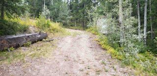 Photo 6: LOT 5 TAPPING Road: Cluculz Lake Land for sale (PG Rural West (Zone 77))  : MLS®# R2354485