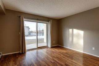 Photo 6: 107 3000 Citadel Meadow Point NW in Calgary: Citadel Apartment for sale : MLS®# A1070603