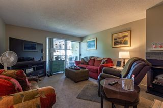 Photo 8: 213 585 Dogwood St in : CR Campbell River Central Condo for sale (Campbell River)  : MLS®# 876595