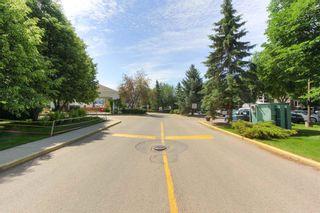 Photo 49: 113 78 MCKENNEY Avenue: St. Albert Condo for sale : MLS®# E4251124