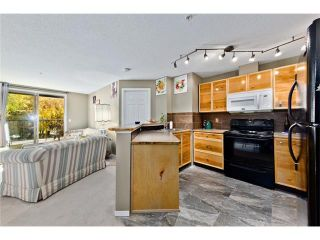 Photo 19: #3106 16969 24 ST SW in Calgary: Bridlewood Condo for sale : MLS®# C4096623