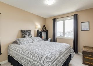 Photo 28: 44 ELGIN MEADOWS Manor SE in Calgary: McKenzie Towne Detached for sale : MLS®# A1103967