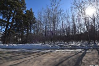 Photo 32: 709 10th Street North in Nipawin: Residential for sale (Nipawin Rm No. 487)  : MLS®# SK846479