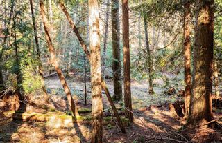Photo 16: 2674 Galleon Way in : GI Pender Island House for sale (Gulf Islands)  : MLS®# 871623
