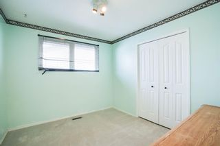 Photo 32: 3307 39 Street SE in Calgary: Dover Detached for sale : MLS®# A1148179