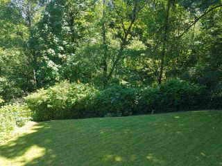 "Photo 19: 11306 ROXBURGH Road in Surrey: Bolivar Heights House for sale in ""bolivar"" (North Surrey)  : MLS®# R2177662"