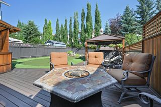 Photo 4: 139 Christie Park Hill SW in Calgary: Christie Park Detached for sale : MLS®# A1128424