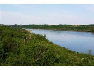 Photo 3: Scrivener Acreage: Hague Acreage for sale (Saskatoon NW)  : MLS®# 393157